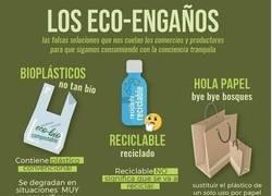 Enlace a Engaños ecológicos