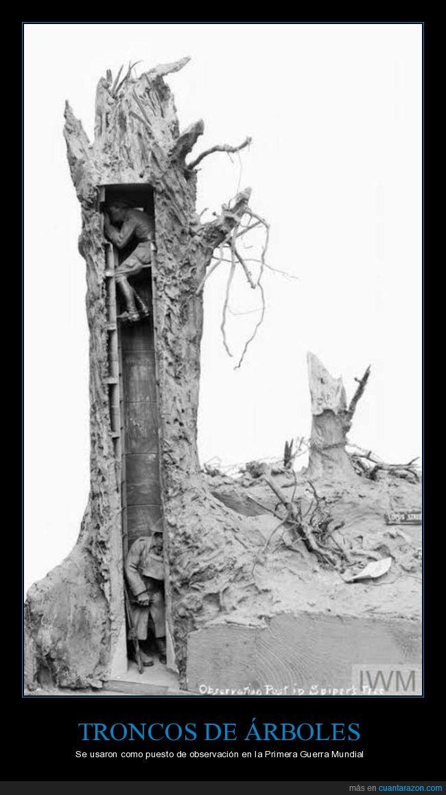érbol,i guerra mundial,puesto de observación,tronco