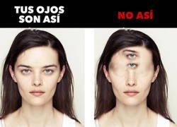 Enlace a Stop fotos y vídeos verticales