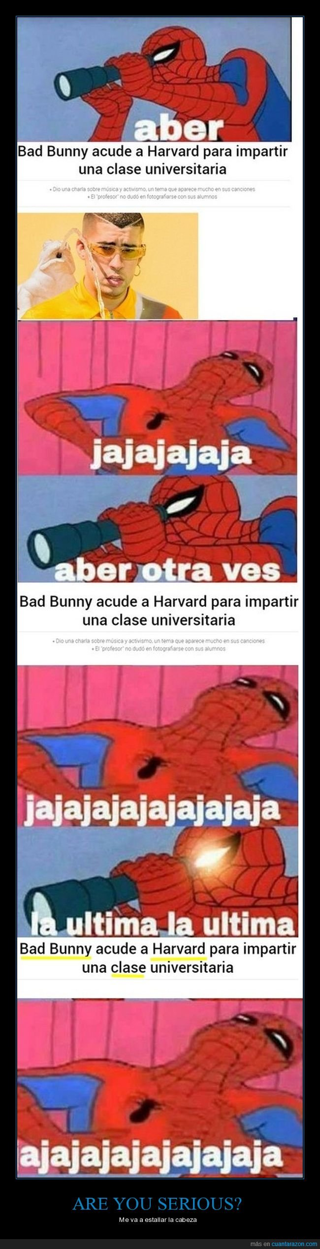 bad bunny,clase,harvard,universidad