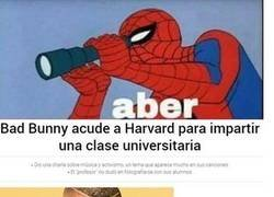 Enlace a Harvard ya no es lo que era...
