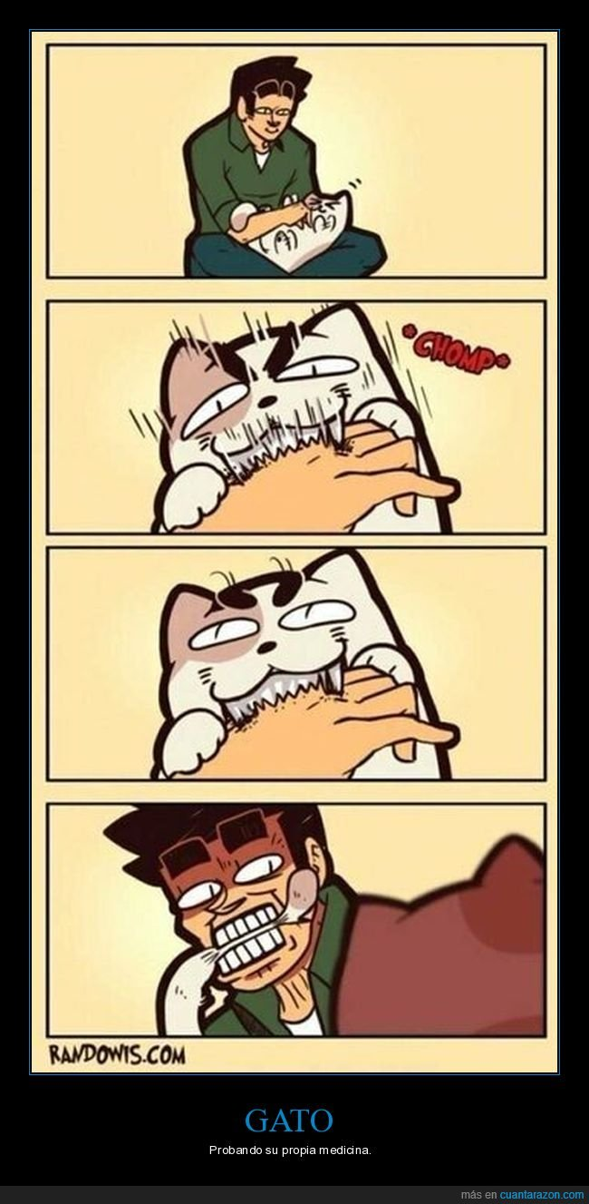 gatos,mordiendo,venganza