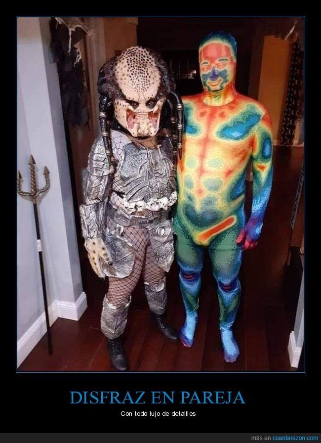 depredador,disfraz,pareja,visión térmica