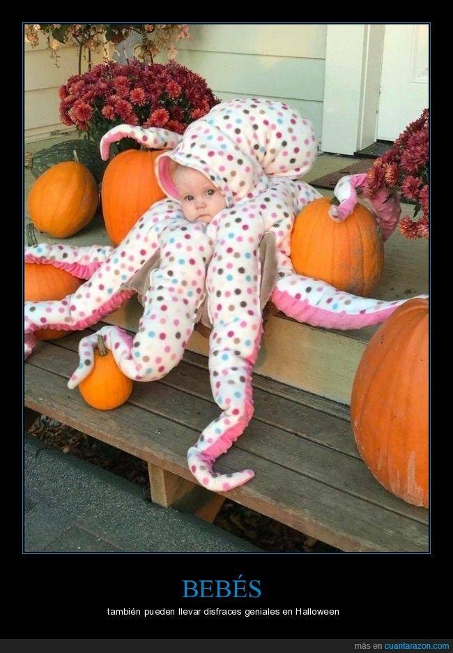 bebé,disfraz,halloween,pulpo