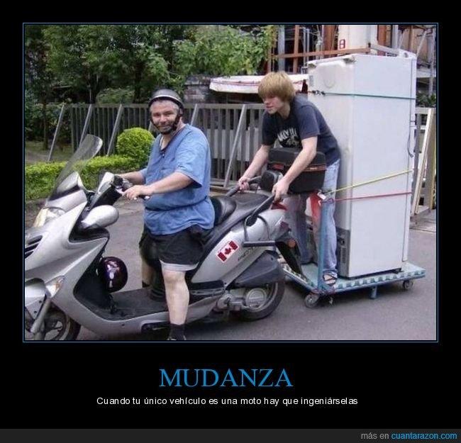 moto,nevera,transportando