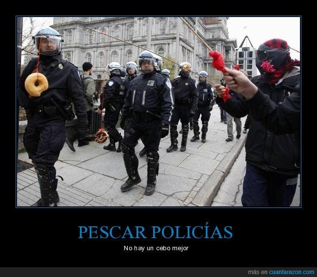 donuts,pescando,policía