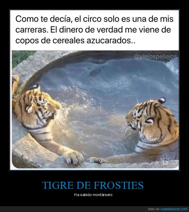cereales,circo,dinero,tigre,tigres