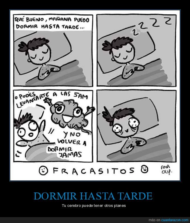 5am,cerebro,despertarse,dormir,tarde