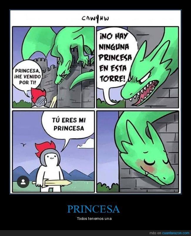 castillo,dragón,princesa