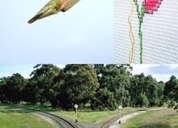 Enlace a Este artista mezcla dos fotografías diferentes para crear obras surrealistas