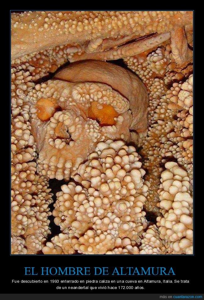 esqueleto,hombre de altamura,neandertal