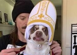 Enlace a Santo pontífice