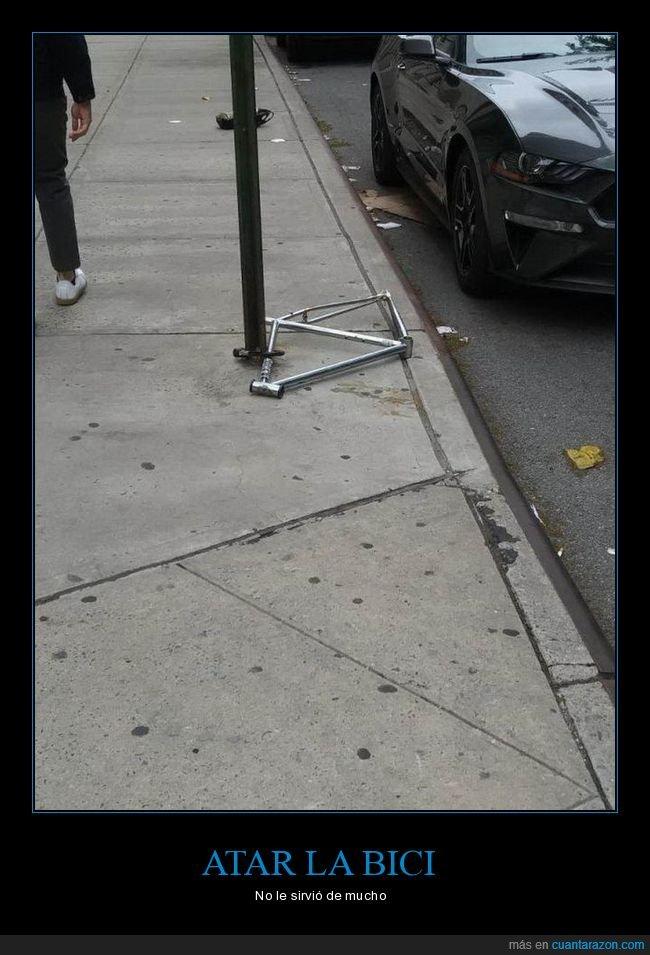 bicicleta,fails,pitón,robo