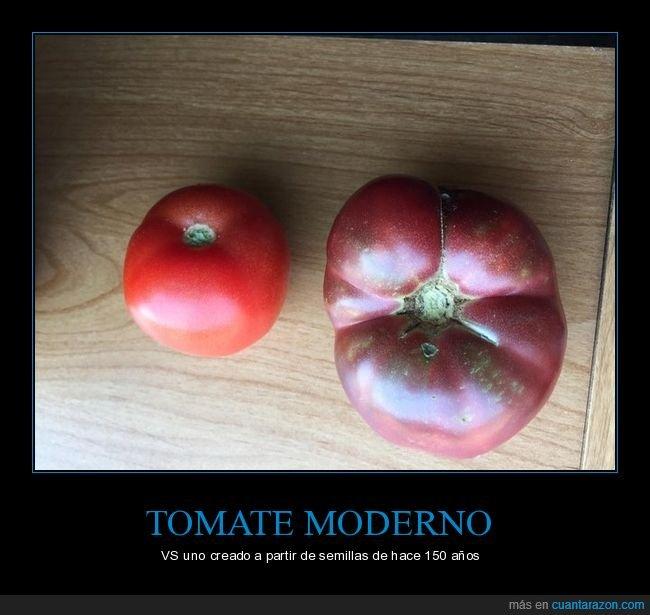 ahora,antes,tomates