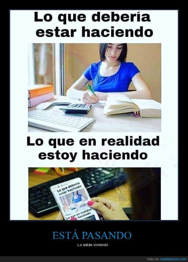estudiar,hacer