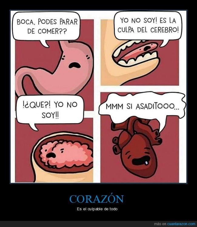 boca,cerebro,comer,corazón,estómago