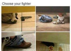 Enlace a Elige a tu luchador