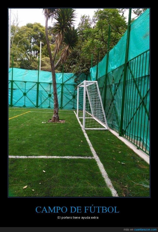 árbol,campo de fútbol,wtf