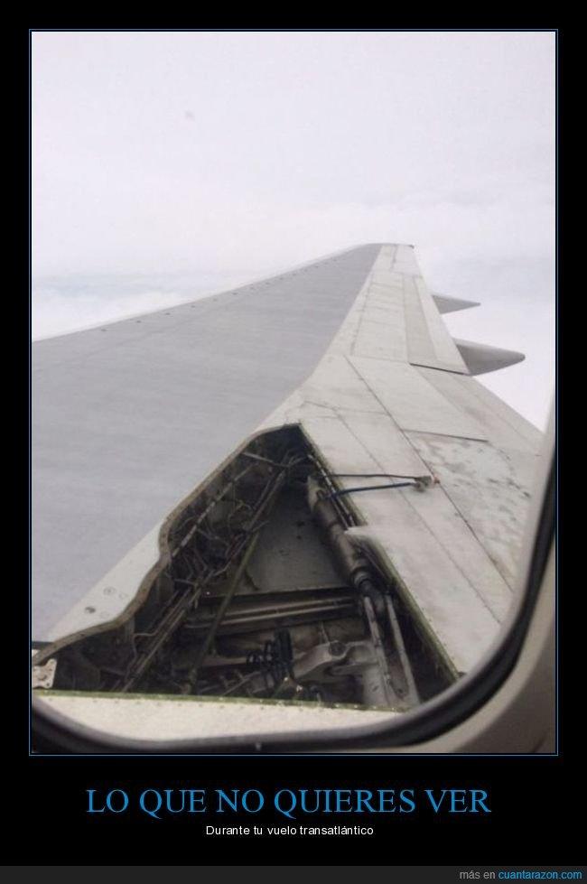ala,avión,fails