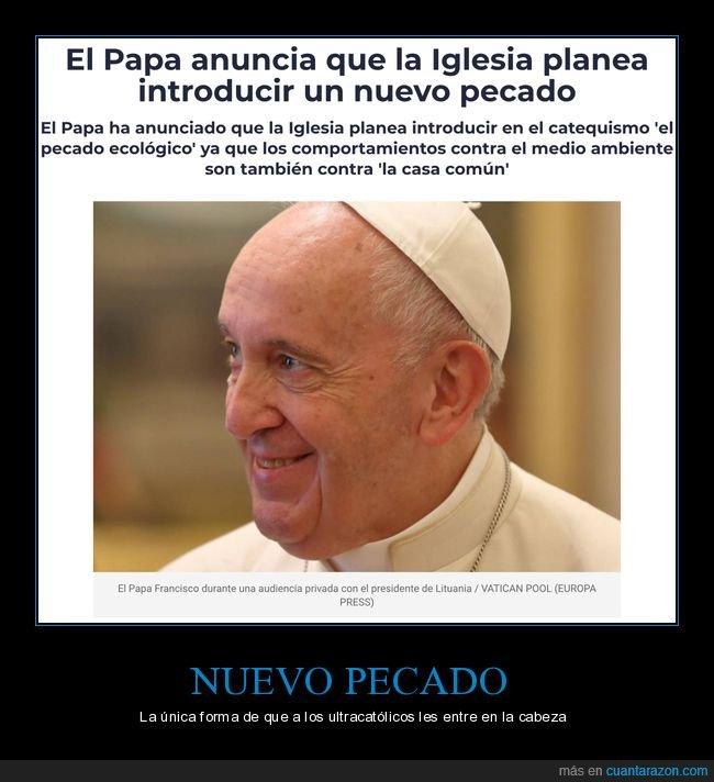 ecologismo,iglesia,nuevo,papa,pecado