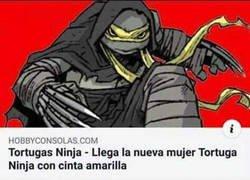 Enlace a La nueva tortuga ninja