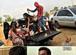 Enlace a Estúpido y festero Spiderman...