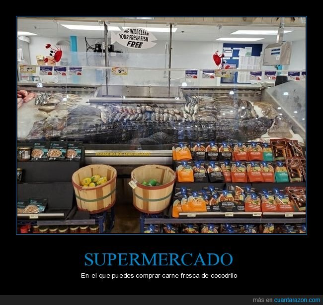 carne,cocodrilo,comprar,supermercado