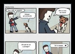 Enlace a Perro protector