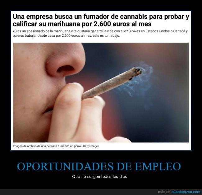 empresa,fumar,marihuana,sueldo,trabajo