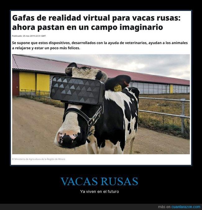 realidad virtual,rusas,rusos,vacas,wtf