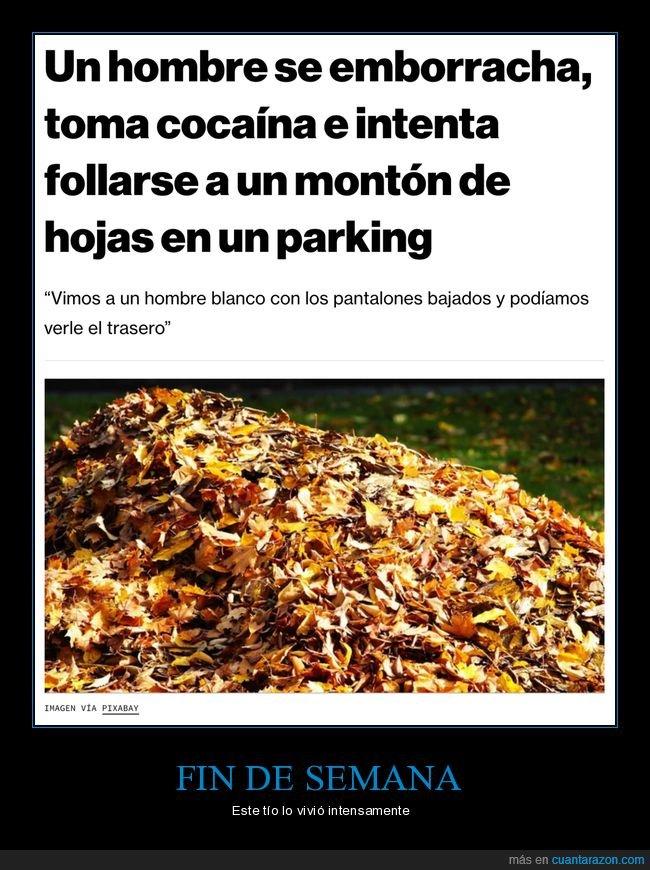 borracho,hojas,parking,wtf