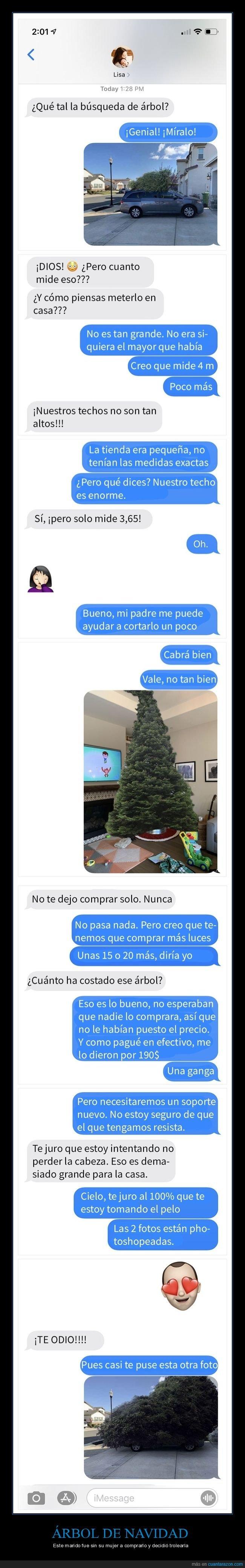 árbol de navidad,trolling
