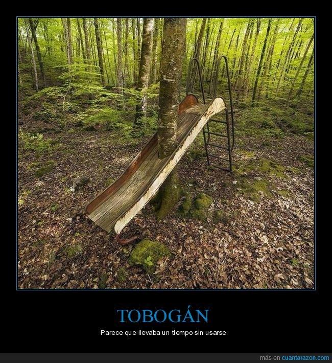árbol,tobogán,wtf
