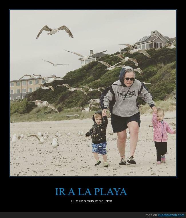 gaviotas,persiguiendo,playa