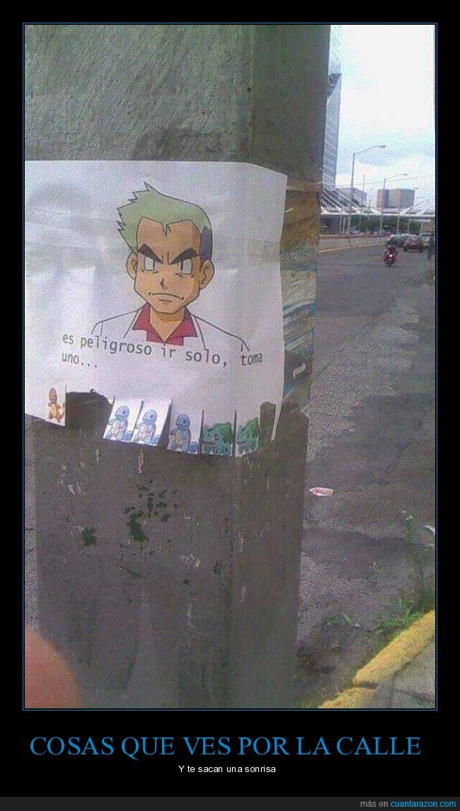 cartel,peligroso,pokemon