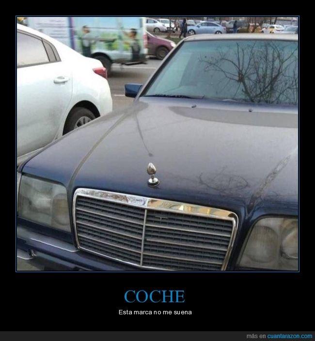 coche,plug,wtf