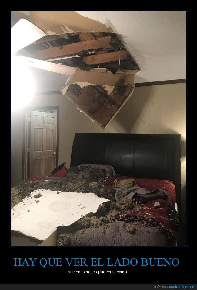 cama,fails,techo