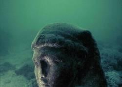 Enlace a Reliquia bajo el agua
