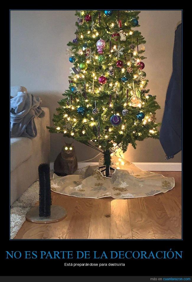 árbol de navidad,gato,ojos