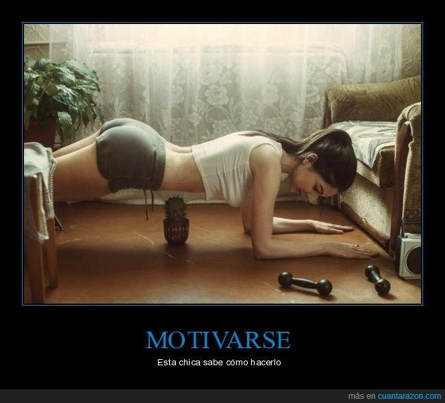 cactus,ejercicio,motivarse