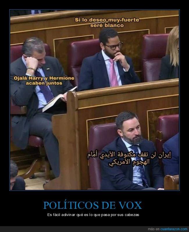 políticos,vox