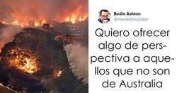 Enlace a Este hombre publicó un hilo terrible revelando la devastación de los incendios de Australia