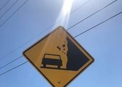 Enlace a Esta señal que advierte sobre la caída de ¿vacas?