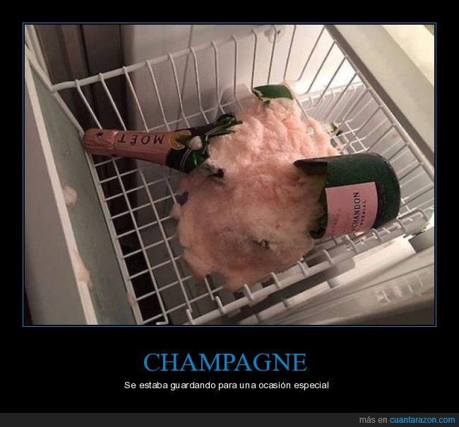 champagne,congelador,fails