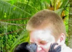 Enlace a El mono no quería fotos