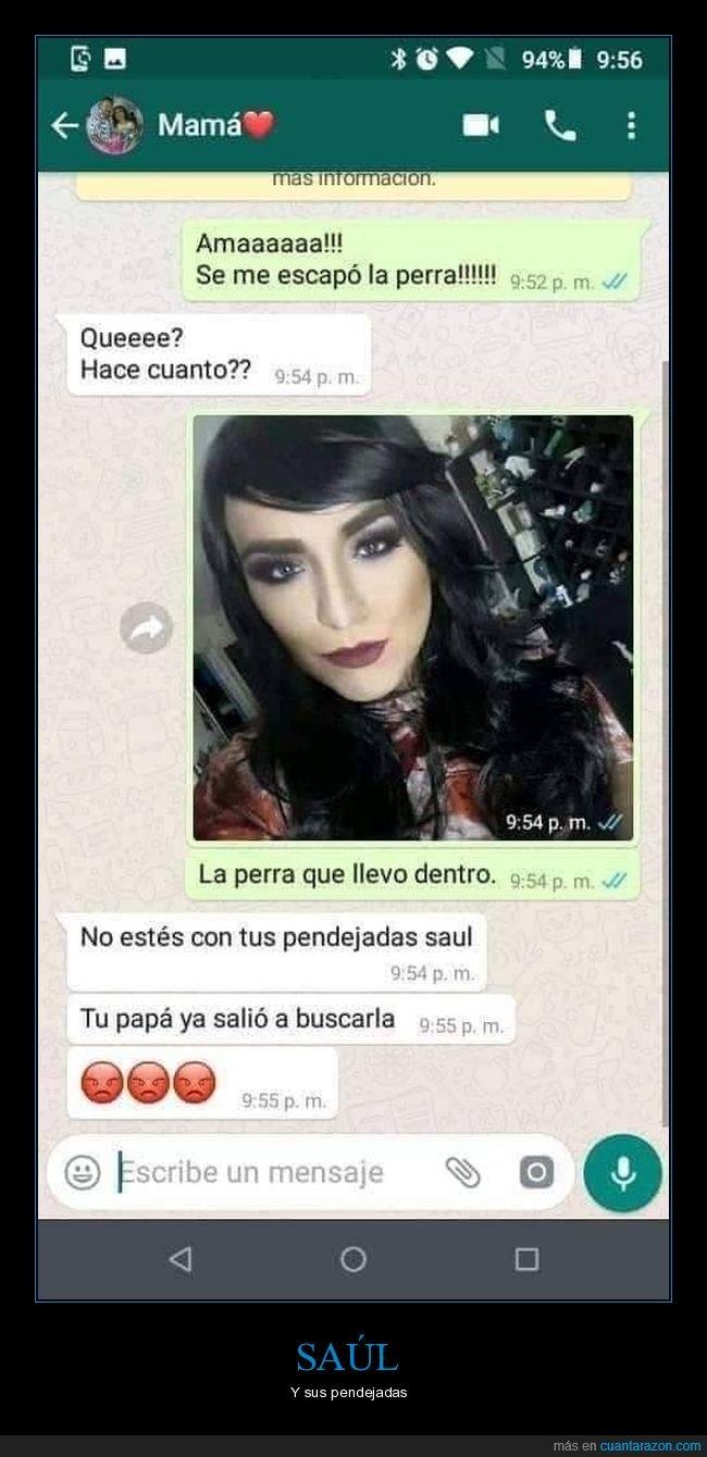Este Saul 3memes Com