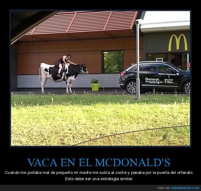mcauto,mcdonald's,vaca,wtf