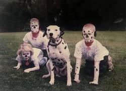 Enlace a Creo que el perro tiene miedo...