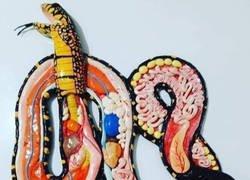 Enlace a El interior de una serpiente