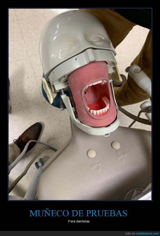 dentistas,muñeco,pruebas
